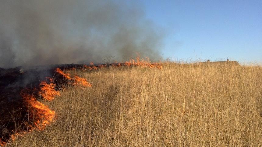 Olson prairie burn spring 2012