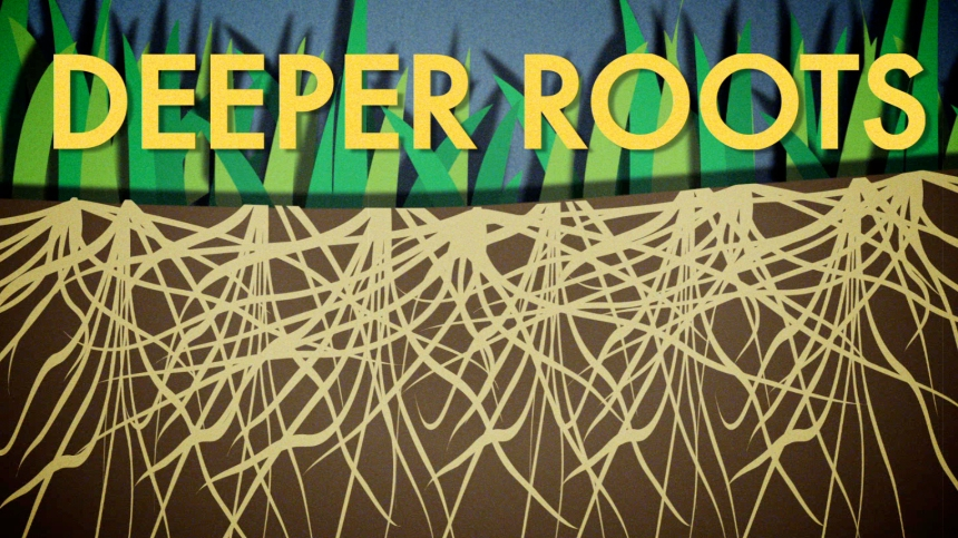 06_Deeper Roots