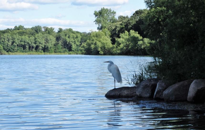 Powers Lake Woodbury SWWD
