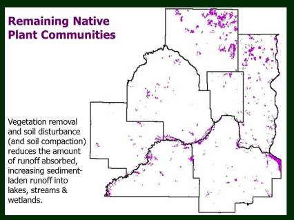 In this image, the purple color indicates remaining native plant communities in the Twin Cities area mapped by the Minnesota Biological Survey, 1987-2017.
