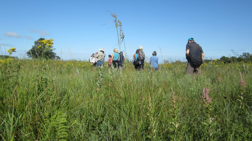 Jason Husveth leads water professionals on a tour at Blaine Wetlands Sanctuary