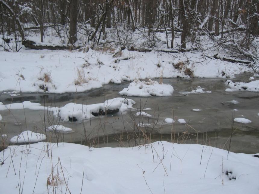 Winter 2008 006