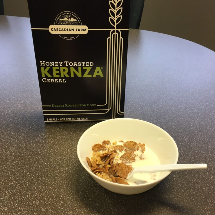Kernza cereal