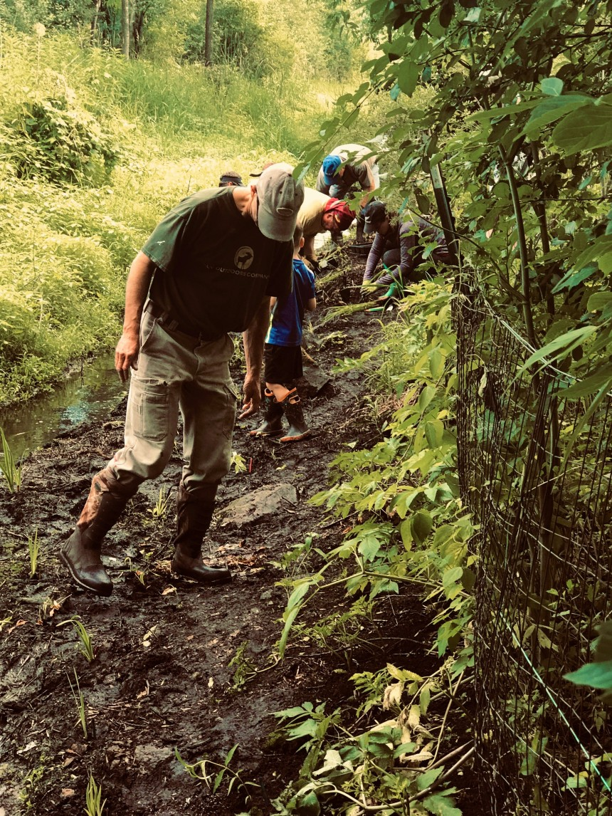 Marine neighbors plant a stream corridor in July